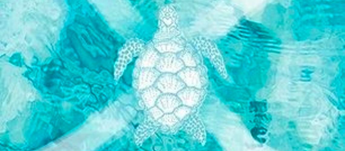 La voie de la tortue de Denise Gilland aux Editions Favre